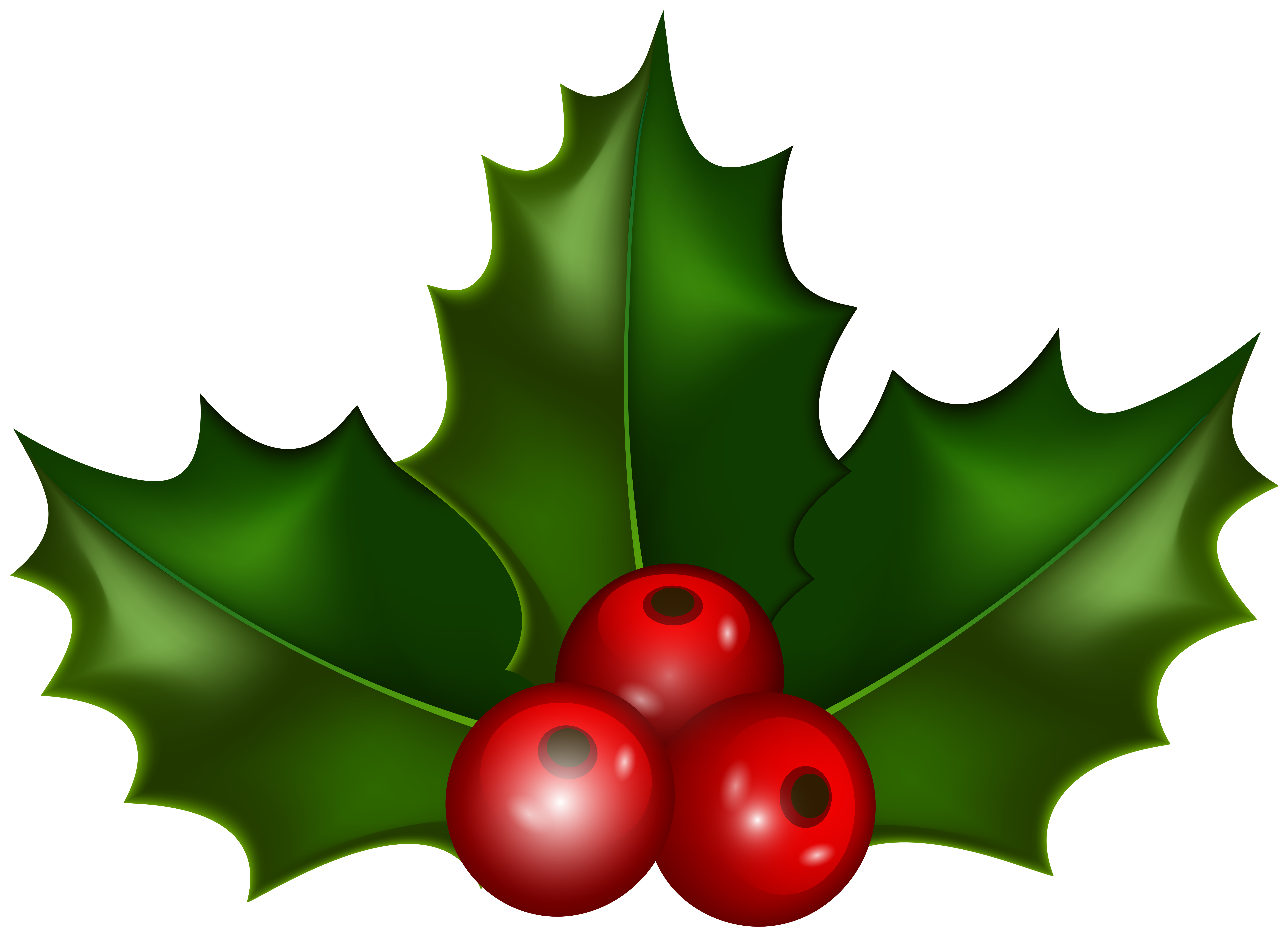 Holly Leaf Christmas Clip Art Gallery High.