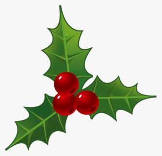 Free Holly Leaf Clip Art with No Background.