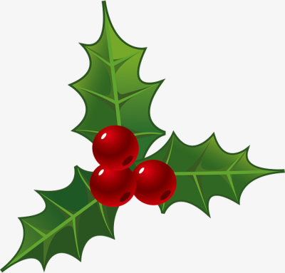 Download Free png Holly Decorations For Christmas, Holly Clipart.