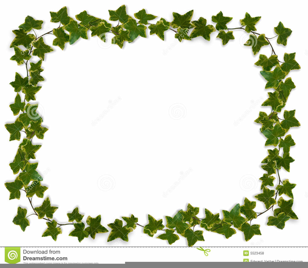 Christmas Graphics Clipart Ivy.