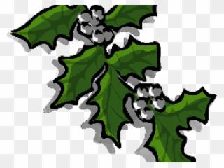 Ivy Clipart Fruit Vine.