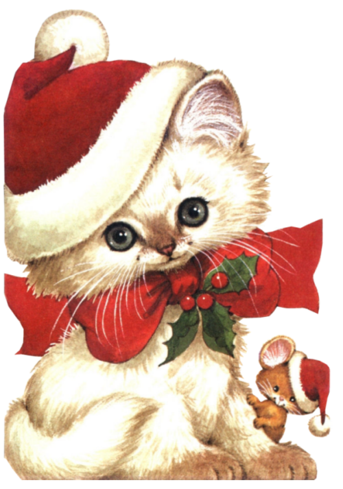 Kitten clipart christmas, Kitten christmas Transparent FREE.