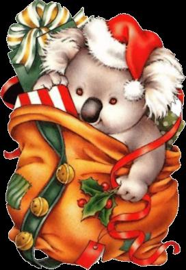 ForgetMeNot: Christmas koalas.