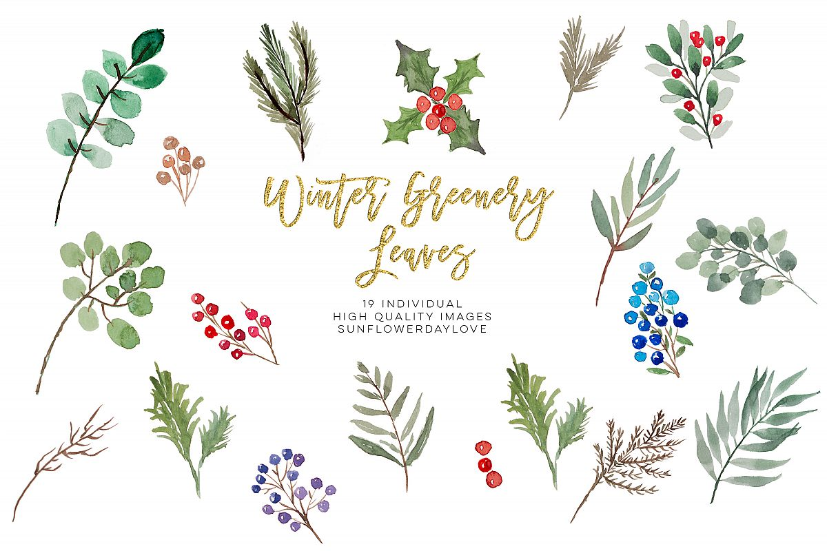 winter greenery leaves clipart, Christmas Leaves.