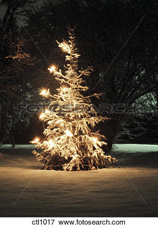 Picture of Christmas tree in the town of Slite on the island of.