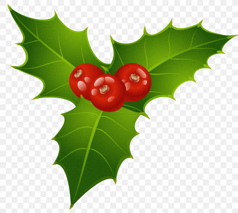 Mistletoe Christmas Common Holly Candy Cane Clip Art, PNG.