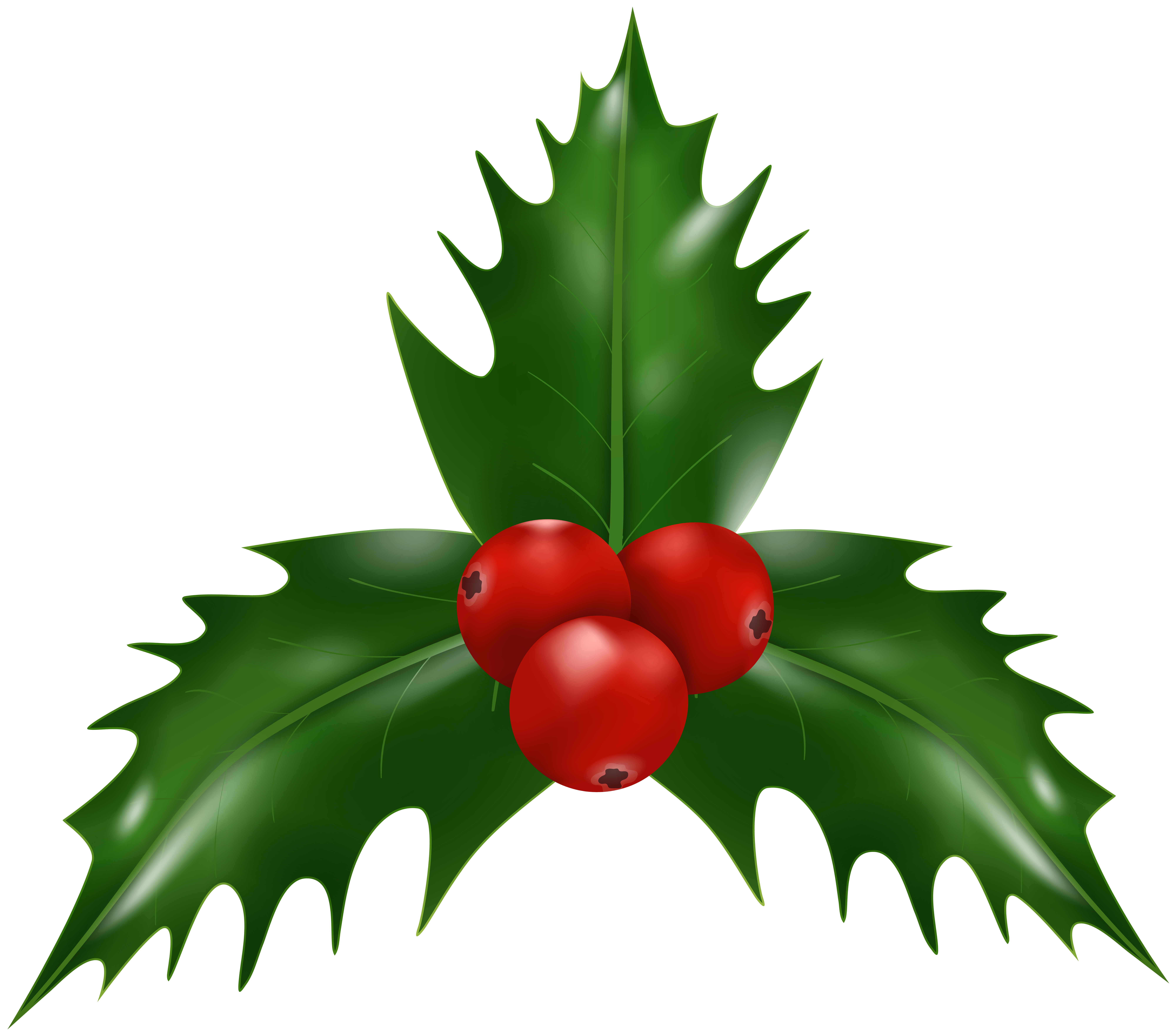 Holly Mistletoe Christmas PNG Clipart.