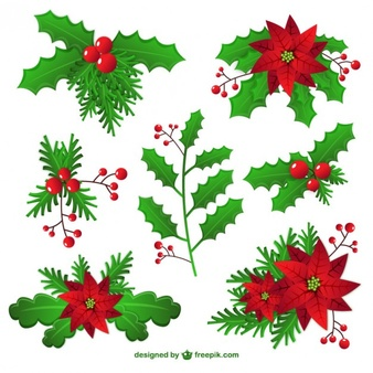 Mistletoe Vectors, Photos and PSD files.