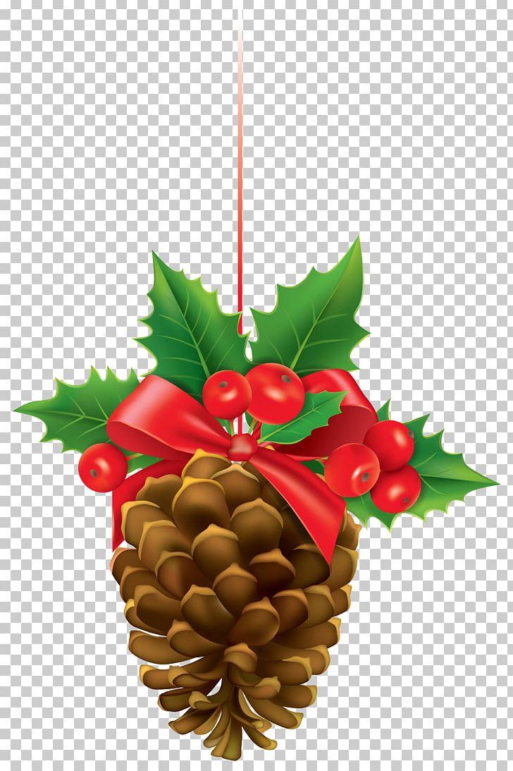 Mistletoe PNG, Clipart, Art Christmas, Christmas, Christmas Clipart.