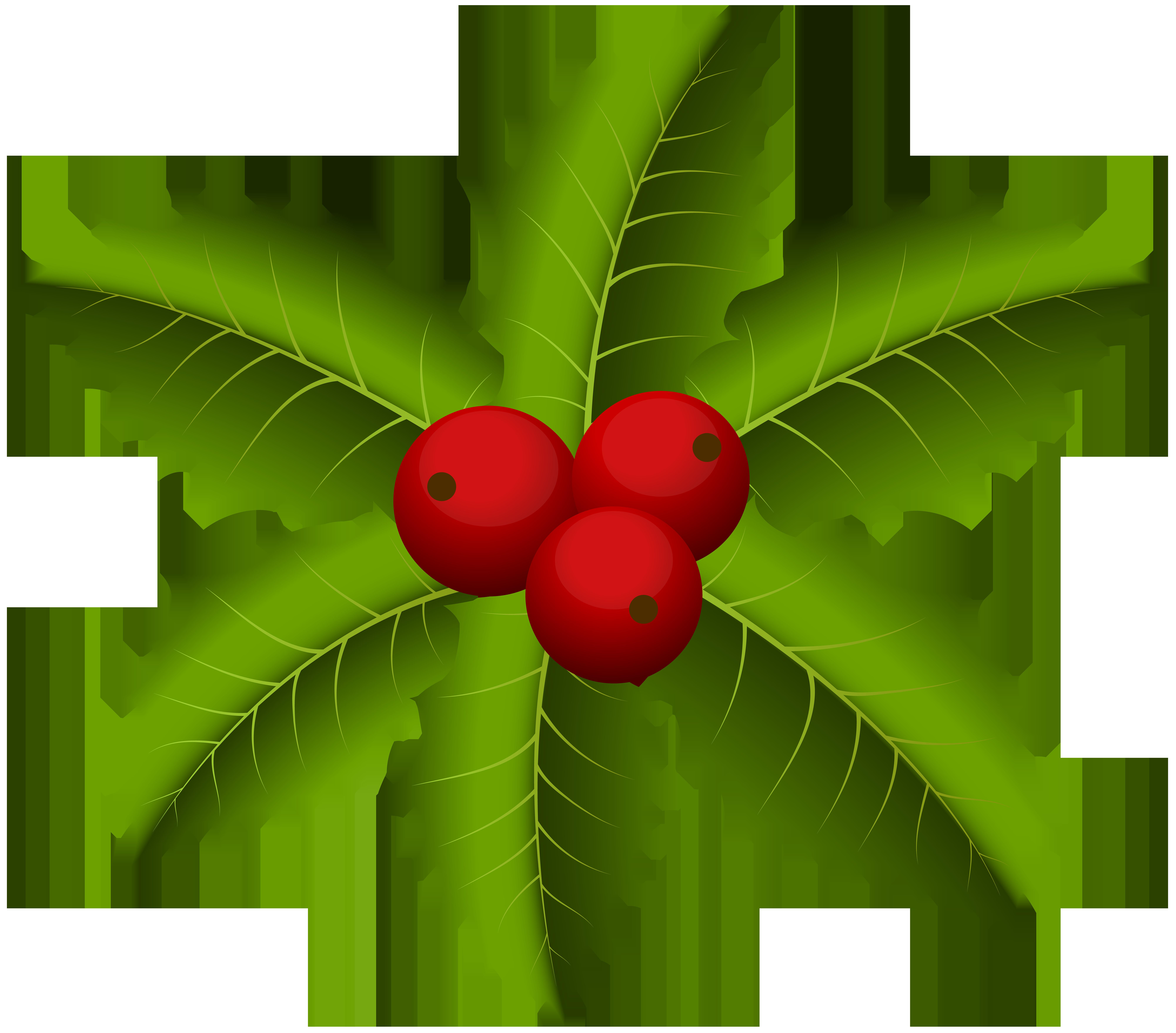 Christmas Mistletoe PNG Clip Art.