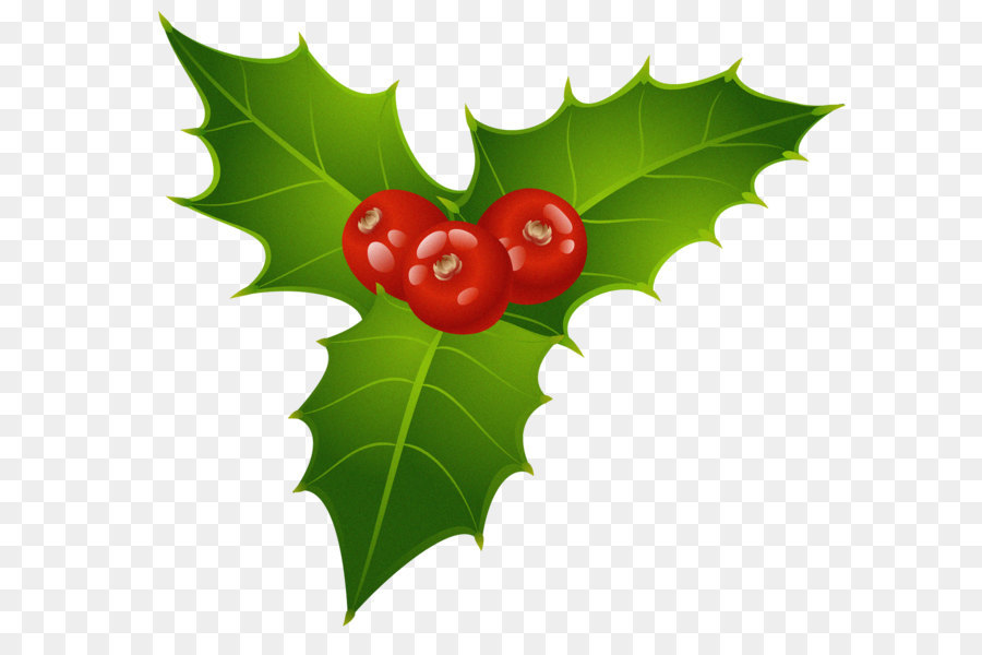 Christmas Mistletoe Png & Free Christmas Mistletoe.png Transparent.