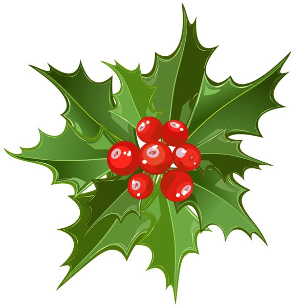 Download Free png Christmas Mistletoe PNG Art.