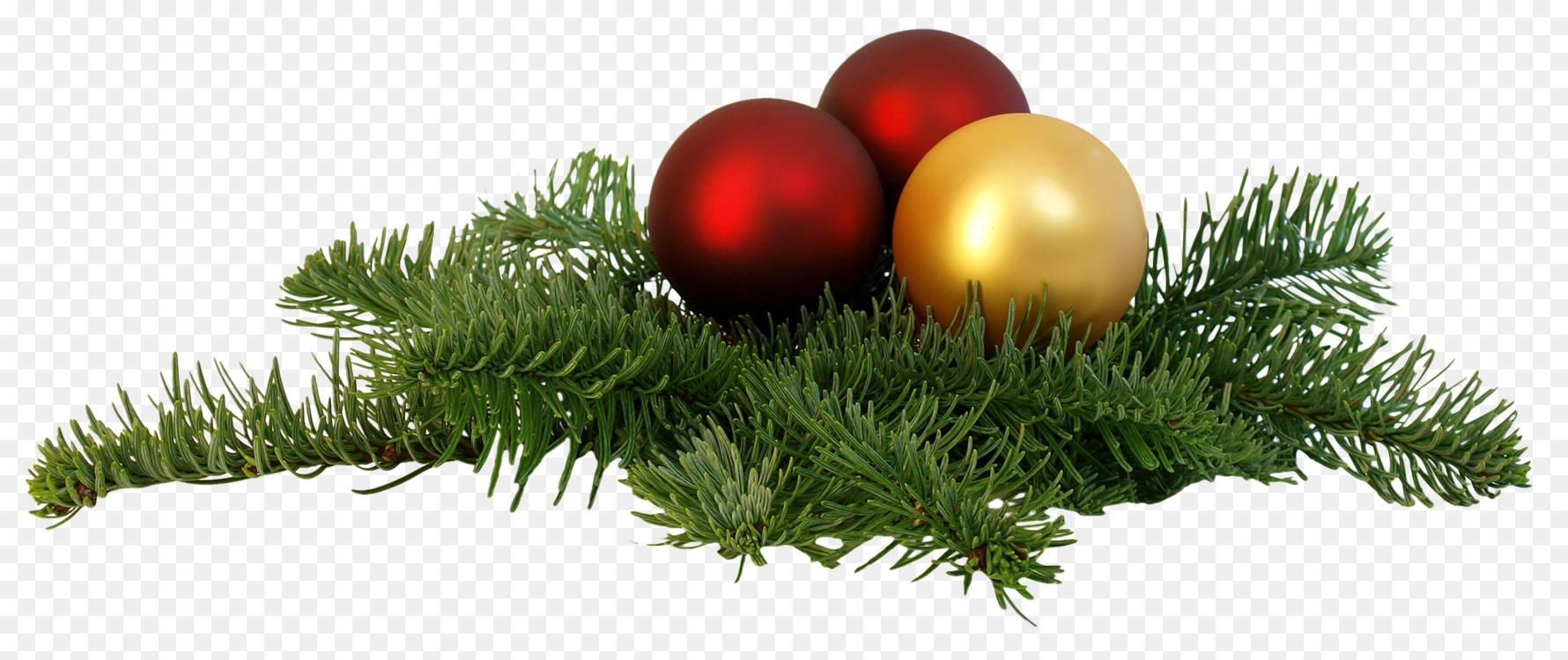 Fir,Pine Family,Christmas Ornament Transparent PNG.