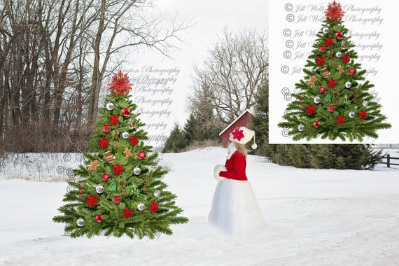 DIGITAL Christmas Tree Overlay PNG for photographers, photography,  Christmas: Christmas Tree Overlay PNG.