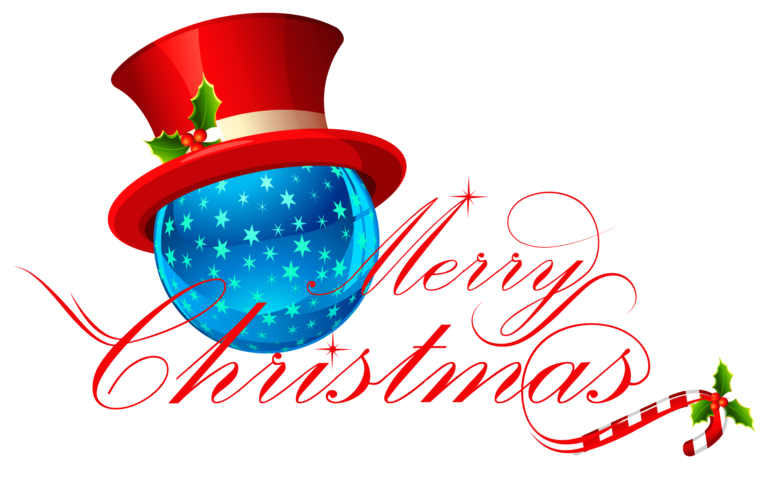 Merry Christmas Party Sign transparent PNG.