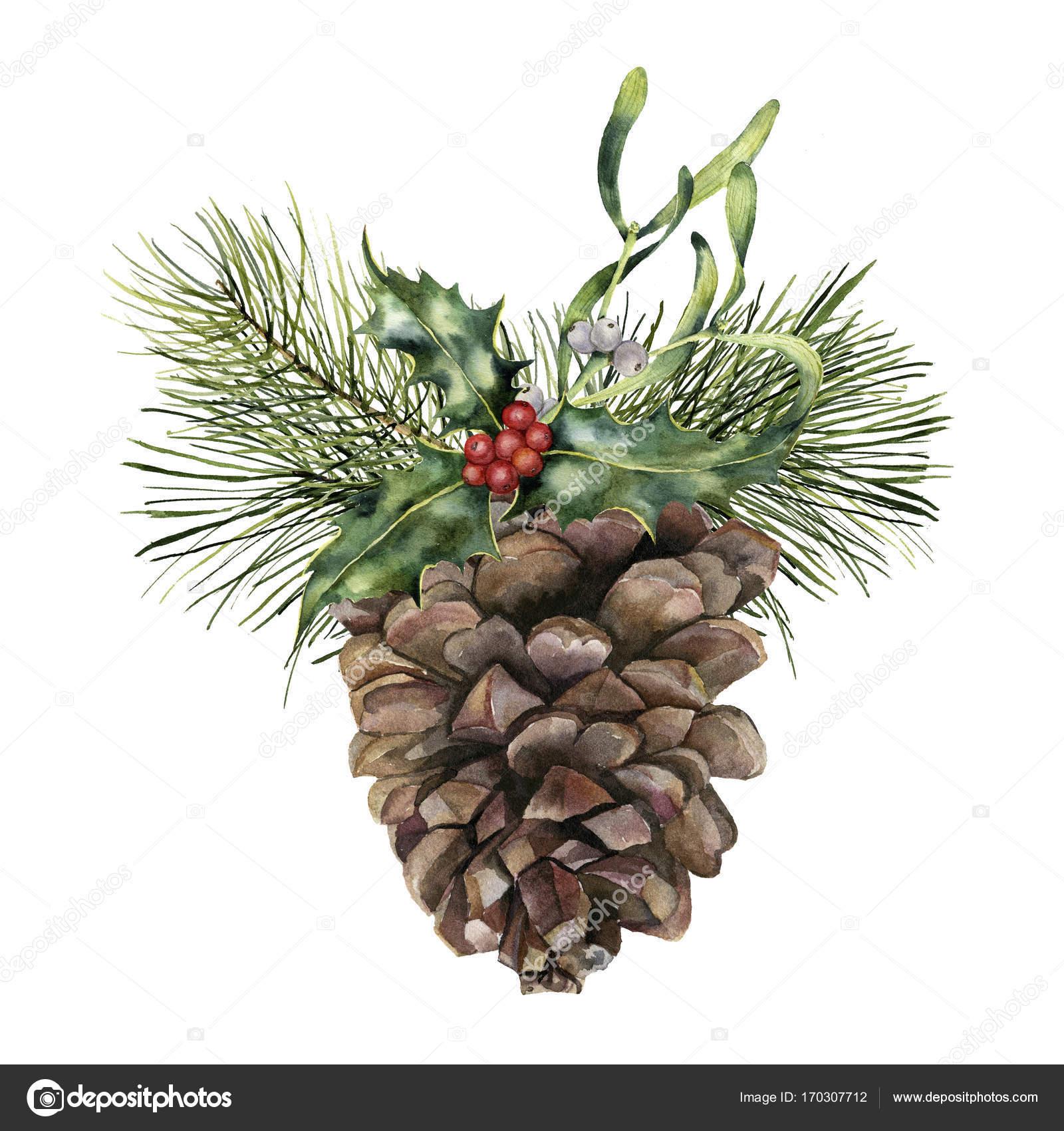 Clipart: christmas pine cone clip art.
