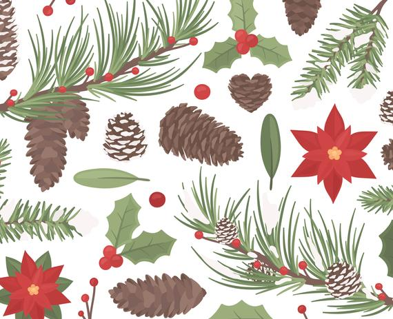 Christmas Pine Cones Clipart Illustration, Christmas Decoration Poinsettia  Christmas Card Digital Clipart, Merry Christmas, Commercial Use.