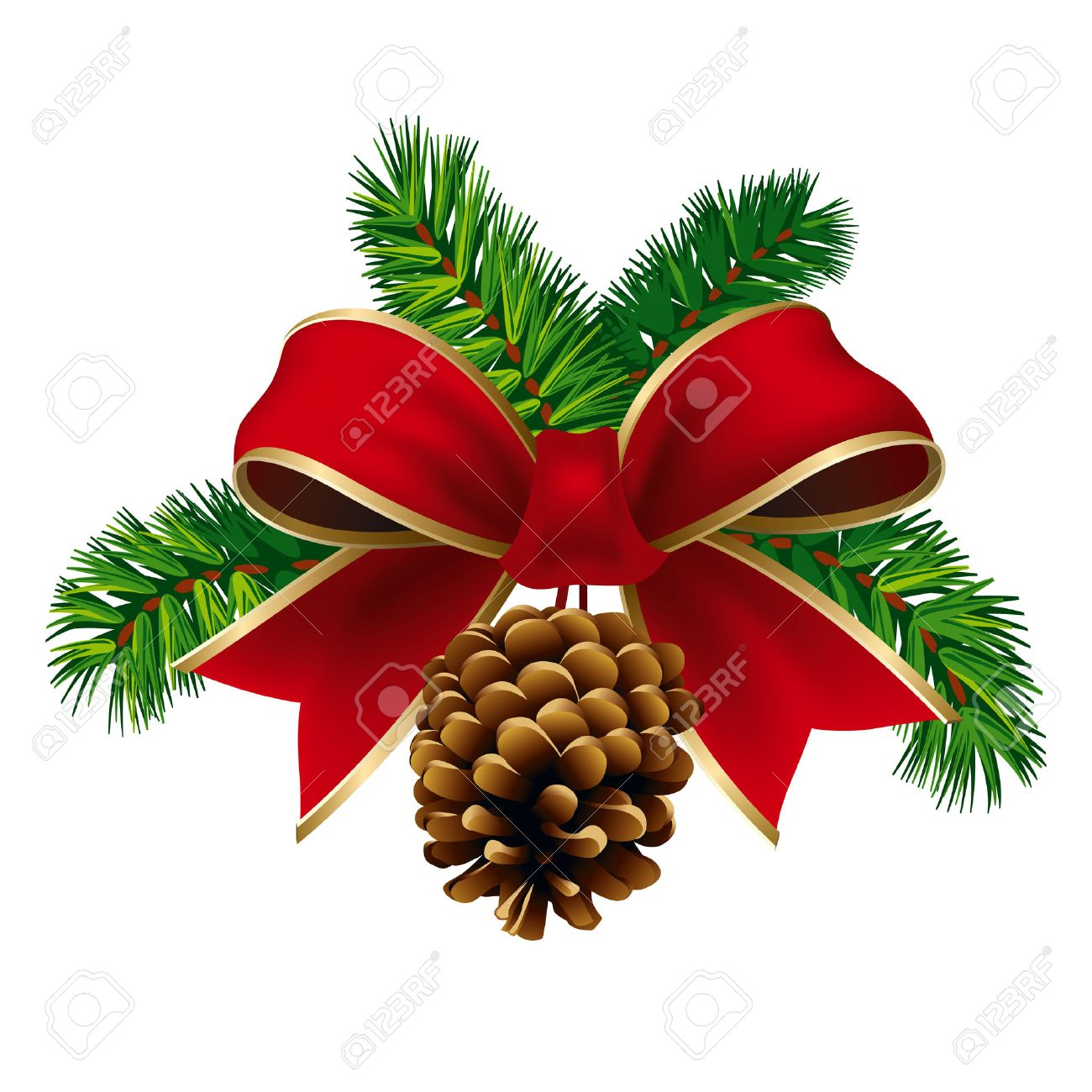 Christmas pine twigs with red ribbon and pine cone. Vector Illustration.