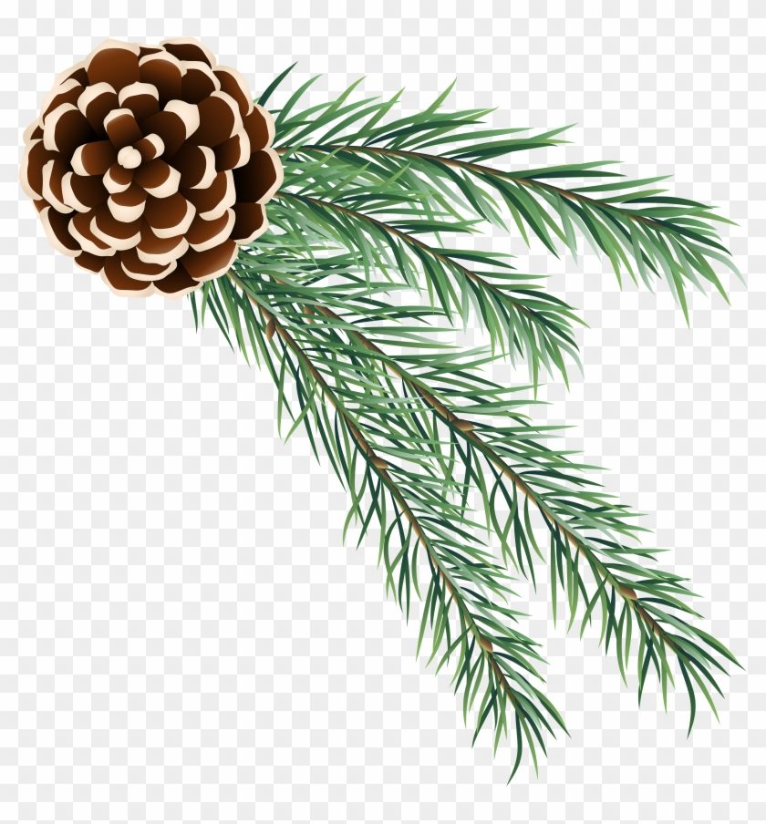 Pine Cone Decoration Png Clip Art.