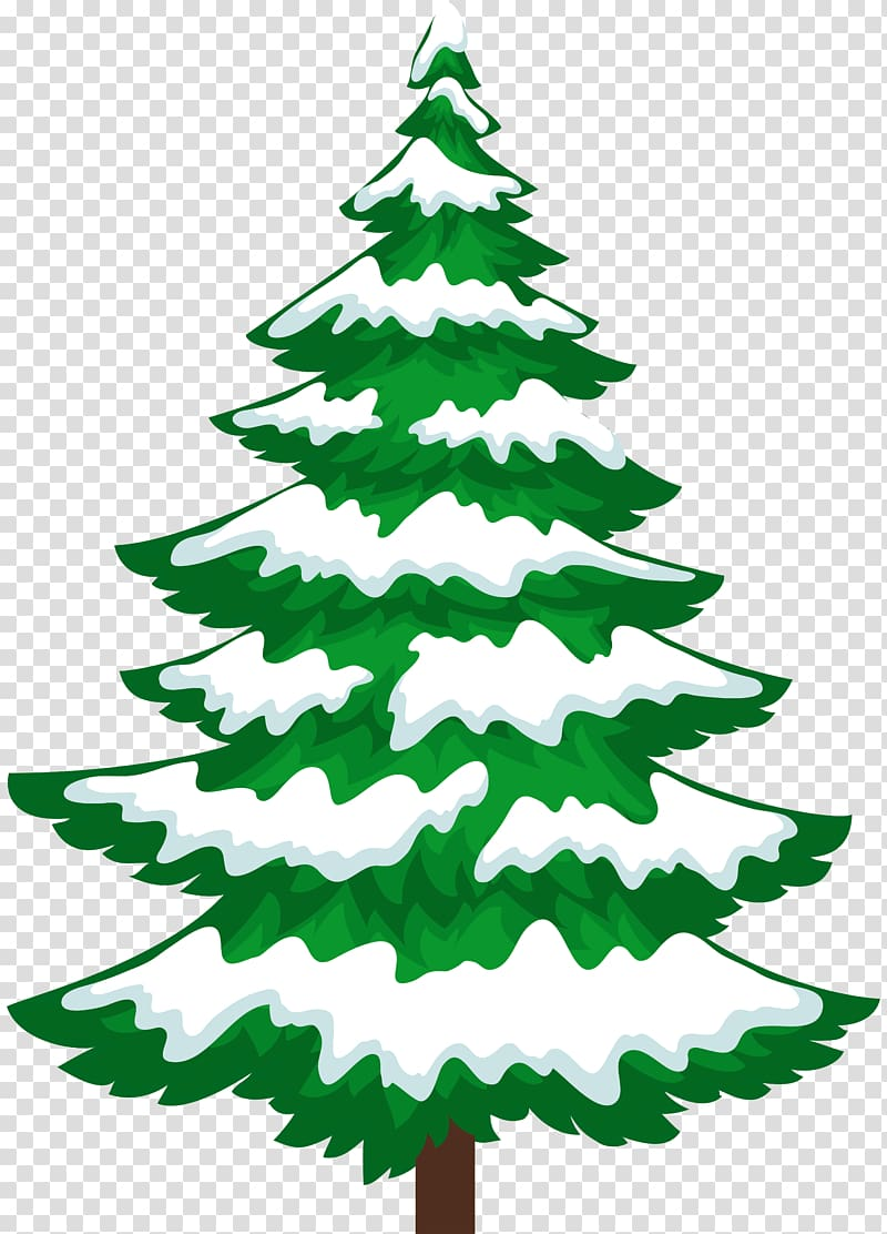 Snow Pine Tree Winter , pine tree transparent background PNG.