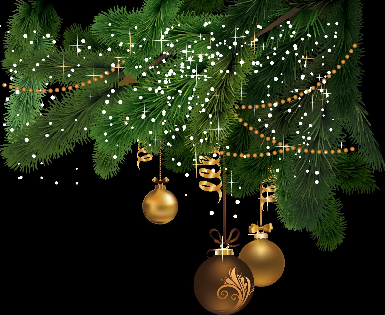 Christmas Tree PNG File.