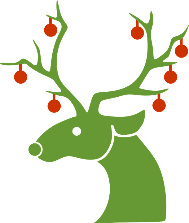 Reindeer Christmas Winter.