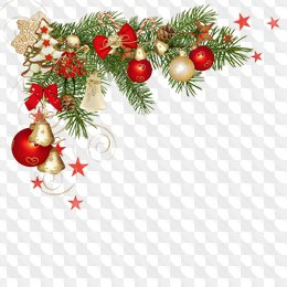 Christmas png images fir.