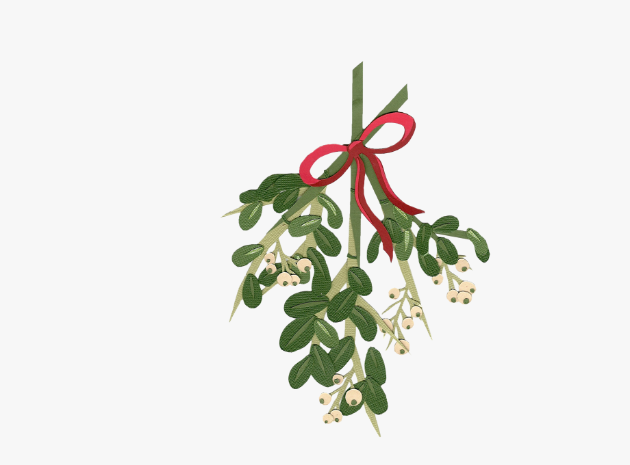 Clip Art Transparent Stock Mistletoe Clipart Tumblr.