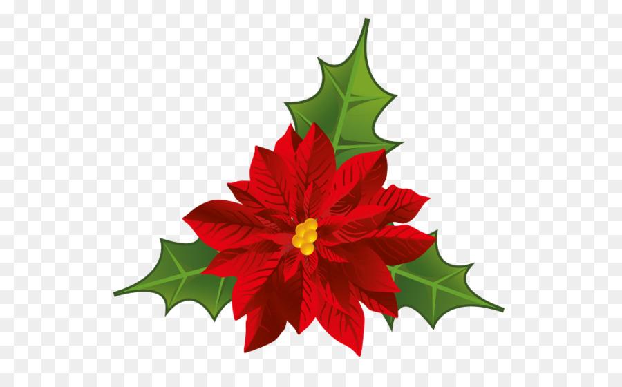 Christmas Poinsettia Clipart clipart.