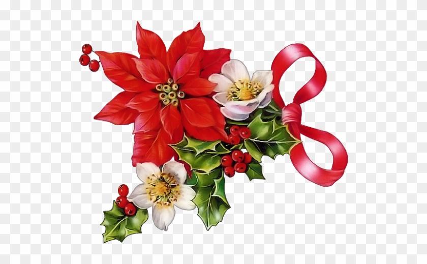 Poinsettia Clipart Beautiful Christmas.