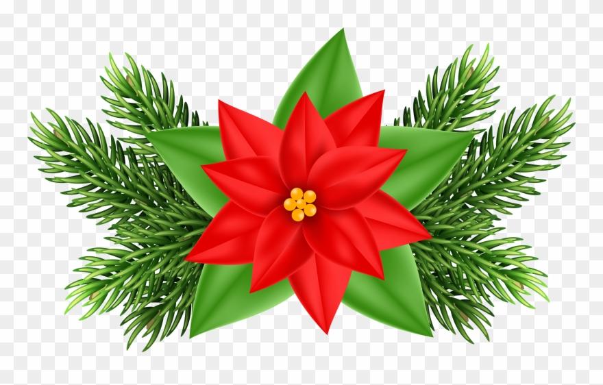 Clip Art Christmas Poinsettia.