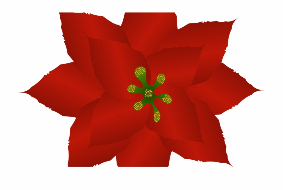 Free Clip Art Christmas Poinsettia Plants.