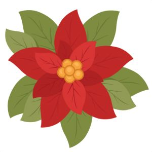 17 Best images about Poinsettias on Pinterest.