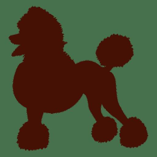 Standard Poodle Puppy Pug Clip art.