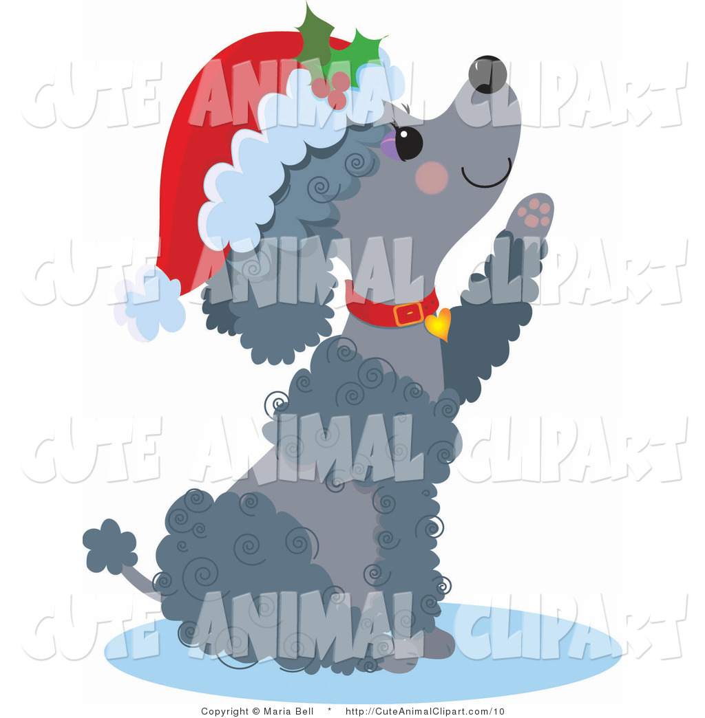 Clip Art of a Cute Christmas Poodle Begging by Maria Bell.