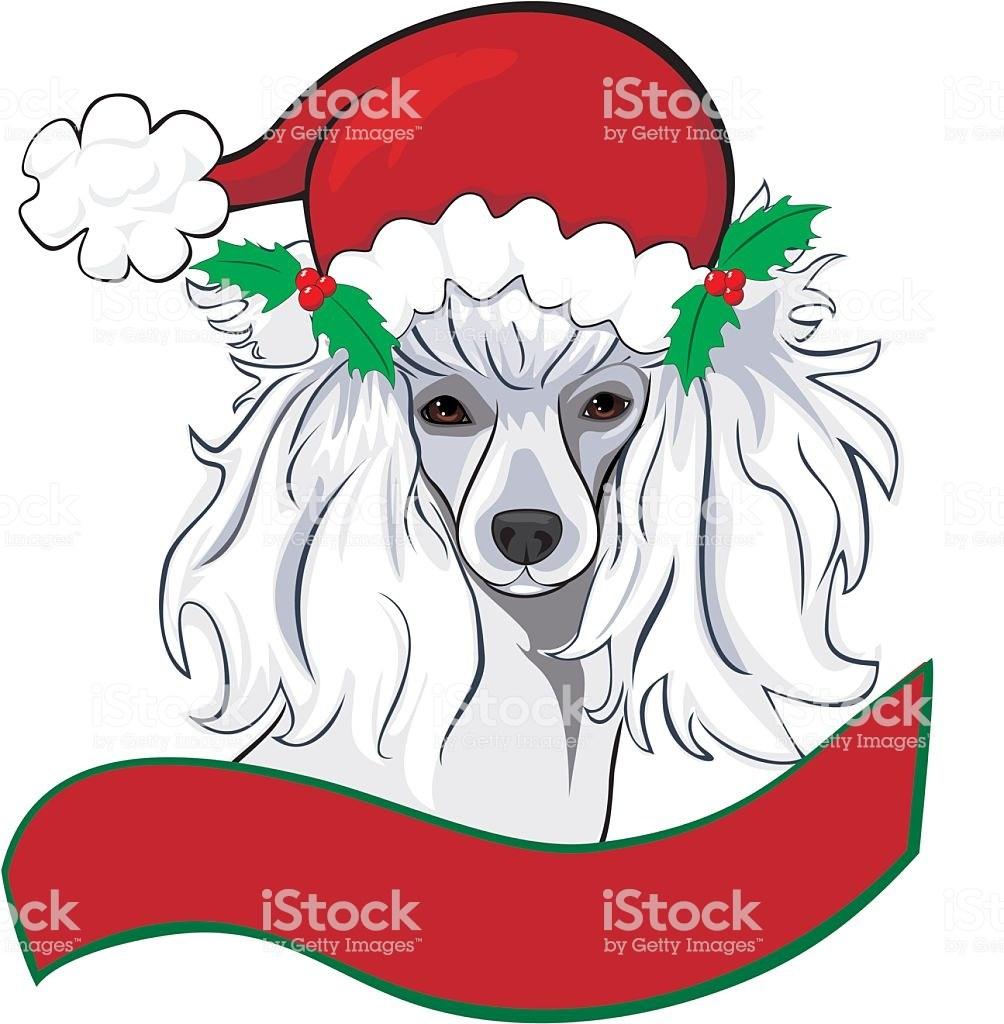 Christmas poodle clipart 6 » Clipart Portal.