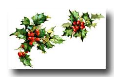 Christmas Potpourri Recipe, Scented Homemade Potpourri.