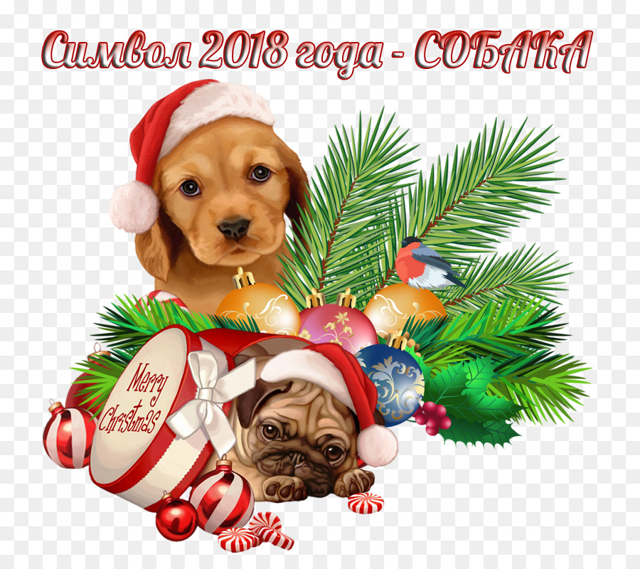 Dog, Christmas, Puppy, transparent png image & clipart free download.