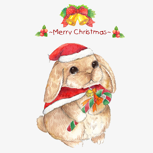 Rabbit clipart christmas.