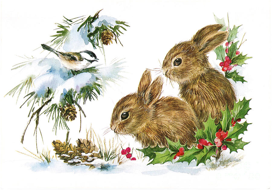 Christmas Bunny Rabbits And Birds Holley.