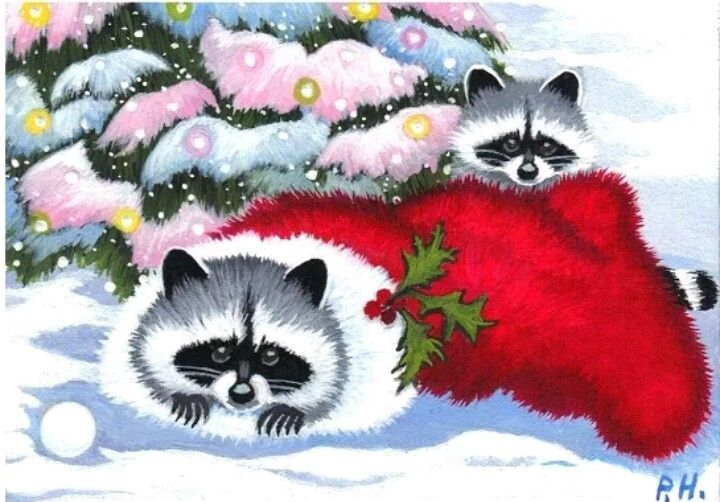 Pin by Diana Smith on Raccoons Christmas.