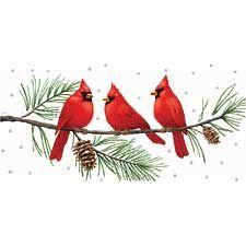 Cardinal clipart winter cardinal #3.