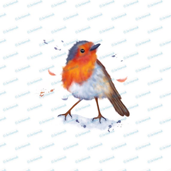 Christmas clipart watercolor clipart robin clipart instant download. Winter  clipart watercolor clipart PNG. Commercial clip art graphic..
