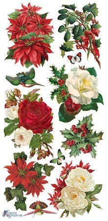 1000+ ideas about Christmas Rose on Pinterest.