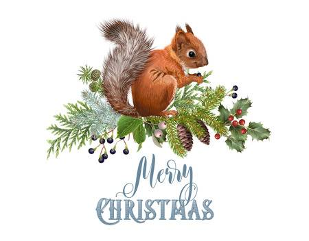 1,072 Christmas Squirrel Stock Illustrations, Cliparts And Royalty.
