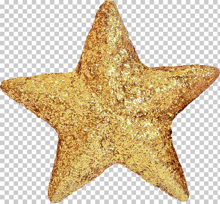 Star Christmas ornament Raster graphics , starfish PNG.