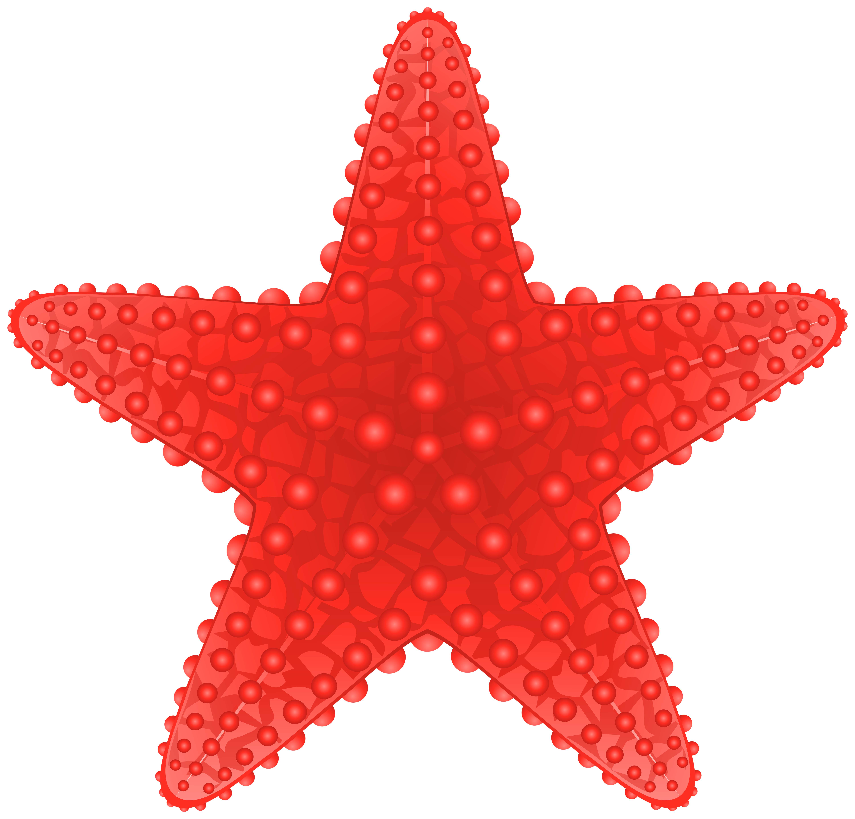 Starfish Transparent PNG Clip Art Image.