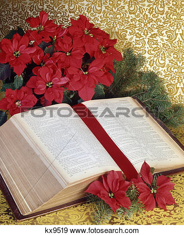 Poinsettia christmas scriptures communion clipart.