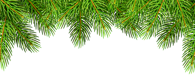 Pine Branches Top Border Clip Art Image.