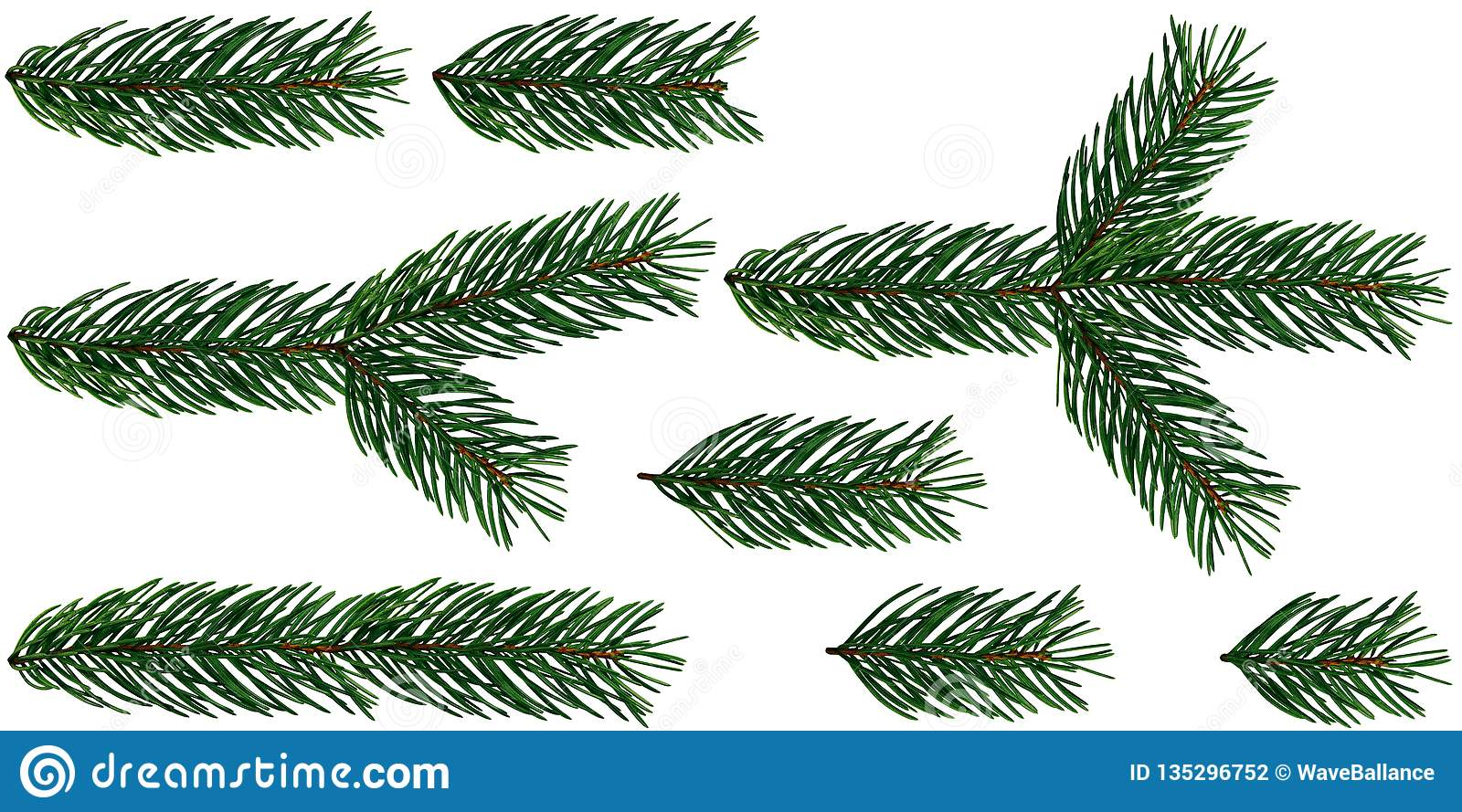 A Set Of 8 Elements Of Fir Tree Branches Christmas Tree Is Isolated.